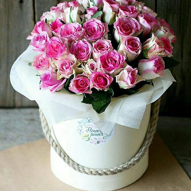 Flower Boxes Wholesale