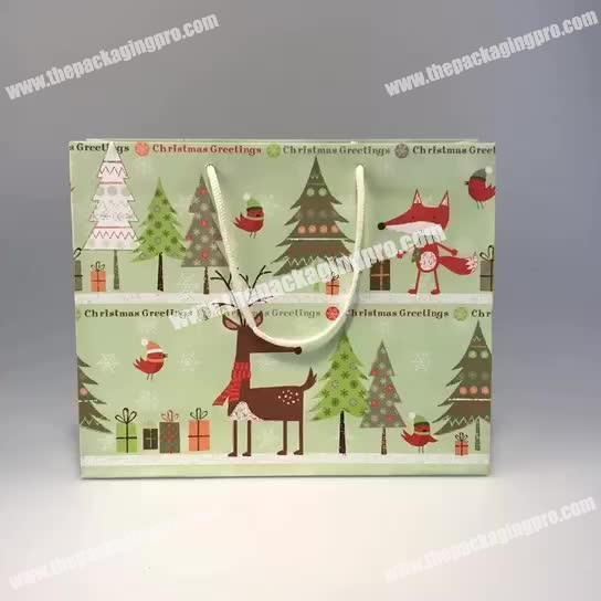 Wholesale Hot Sale Custom High Quality Paper Bag Gift Bag for Shopping
